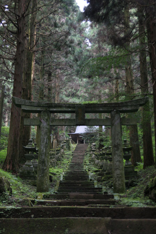 Forest Shrine in Takamori-machi, Kumamoto japan hotarubi no mori es real location (10)