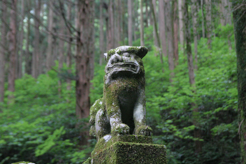 Forest Shrine in Takamori-machi, Kumamoto japan hotarubi no mori es real location (2)
