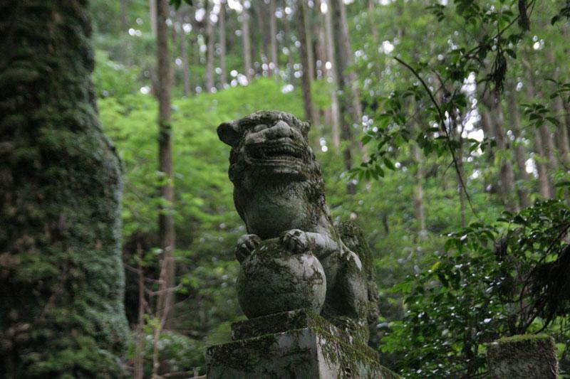 Forest Shrine in Takamori-machi, Kumamoto japan hotarubi no mori es real location (3)