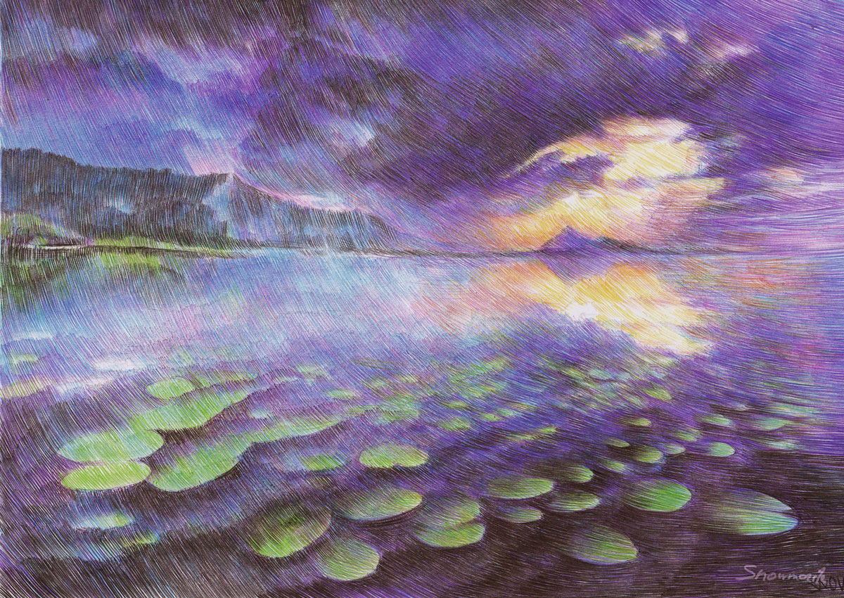 after the storm by snowmarite d8352cn Beautiful Ballpoint Pen Drawings by Marite Desaine