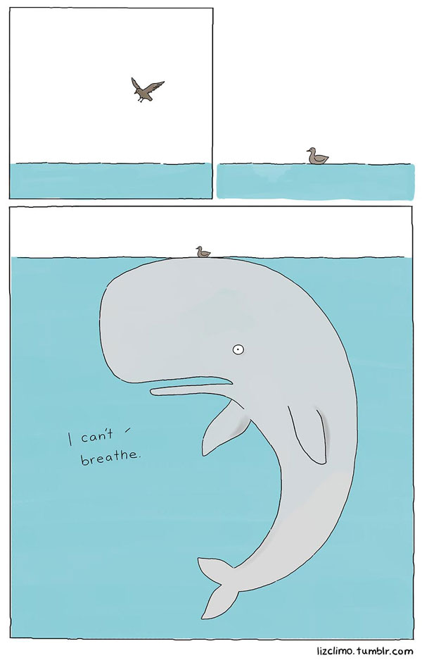 animal comics by simpsons artist liz climo (1)