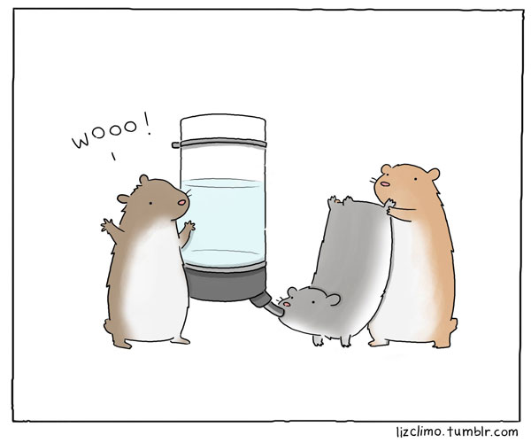 funny animal comics by liz climo (1)