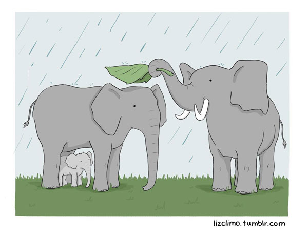 funny animal comics by liz climo (4)