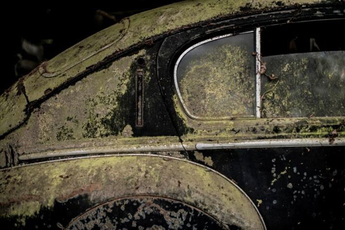 60 Rare Cars Worth Millions Found in French Countryside, Untouched for 50 Years (16)