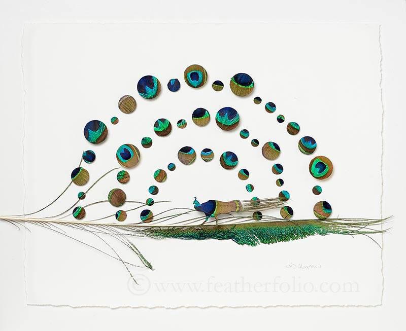 chris maynard feather art (3)