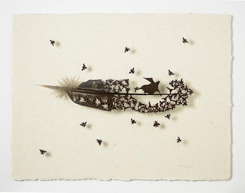 chris maynard feather art (7)