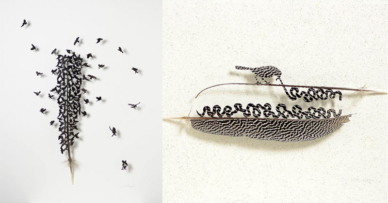 Artist Turns Moulted Feathers Into Works of Art UsingScissors