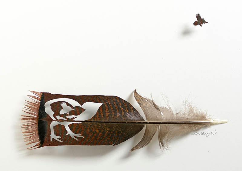 feather art by chris maynard (11)