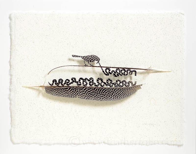 feather art by chris maynard (3)