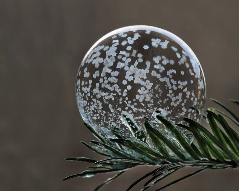 Blowing Soap Bubbles in Cold Weather by cheryl johnson (3)