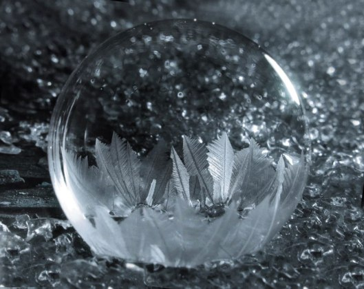 Blowing Soap Bubbles in Cold Weather by cheryl johnson (8)
