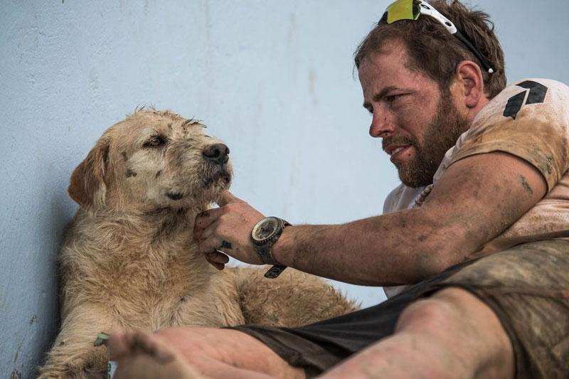 dog follows and joins swedish adventure race team  (3)