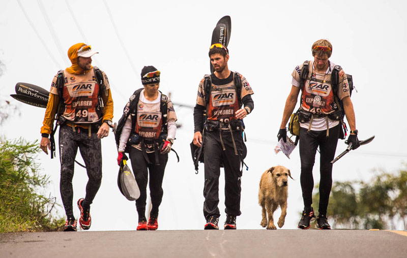 dog follows and joins swedish adventure race team  (6)