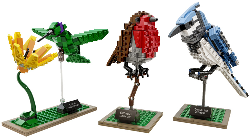 LEGO Birds by Tom Poulsom
