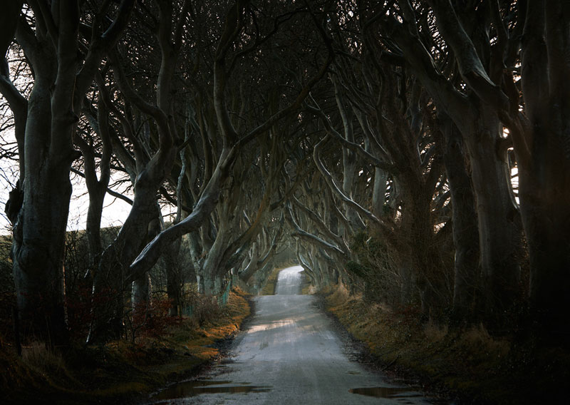 photos of roads by andy lee 6 10 Central European Landscapes Inspired by Grimms Fairy Tales