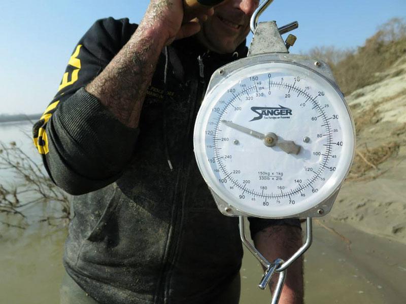 dino ferrari catches record breaking 280 pound catfish in italy (5)