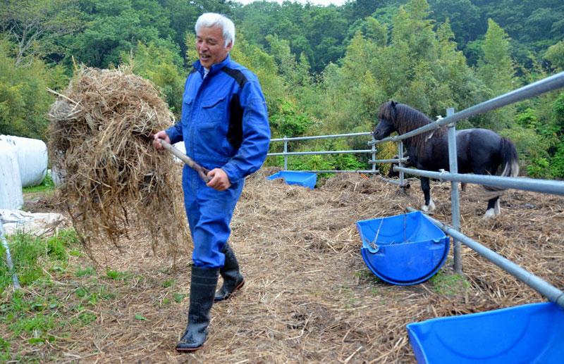 after fukushima Naoto Matsumura takes care of abandoned animals in tomioka (2)