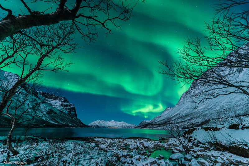 18 Stunning Green Auroras for St Paddy'sDay