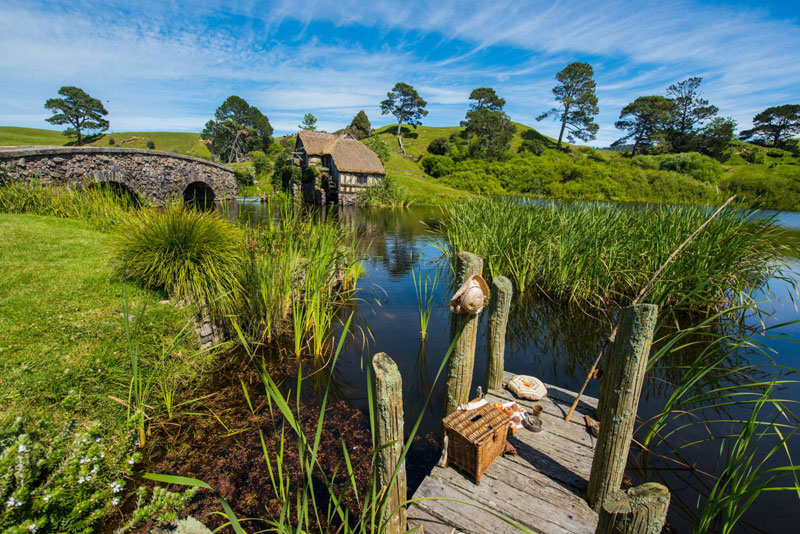 hobbiton movie set tour new zealand (3)