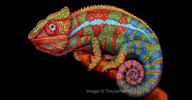 Tim Jeffs Draws Incredibly Detailed Lizards Using PencilCrayons