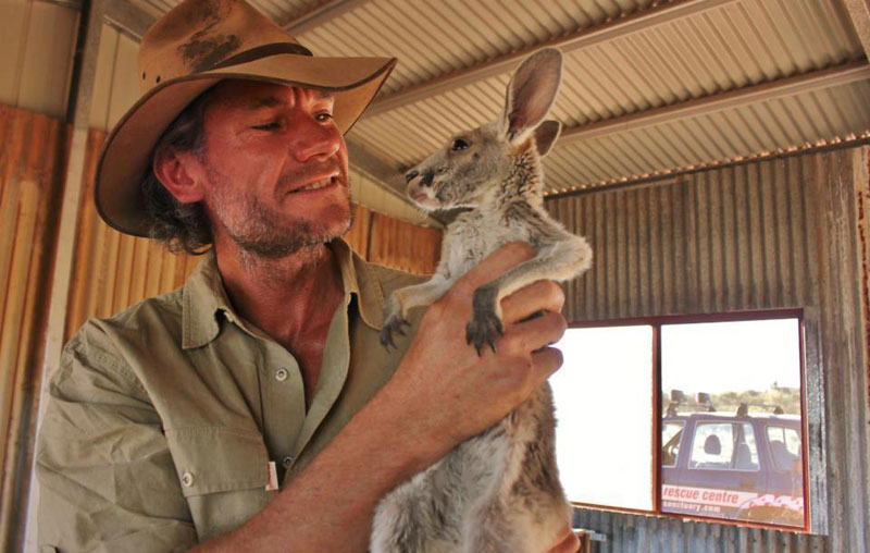 kangaroo dundee chris brolga barns kangaroo sanctuary (3)
