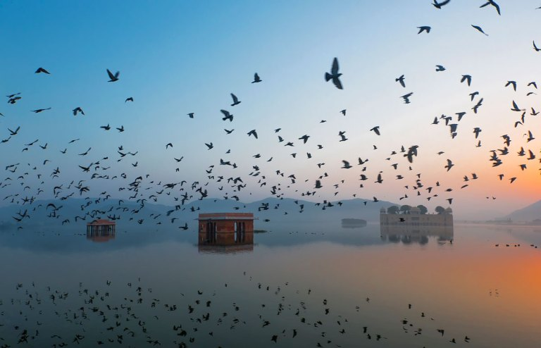 Jal-Mahal-during-Sunrise