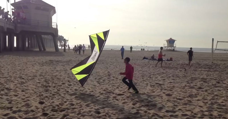 Amazing Kite Flyer Plays a Game of Tag with a Kid on the Beach