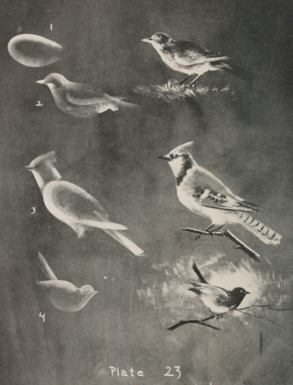 blackboard chalk art from 1908 by frederick whitney (17)