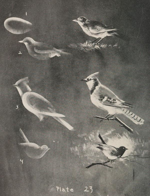 blackboard chalk art from 1908 by frederick whitney (17)