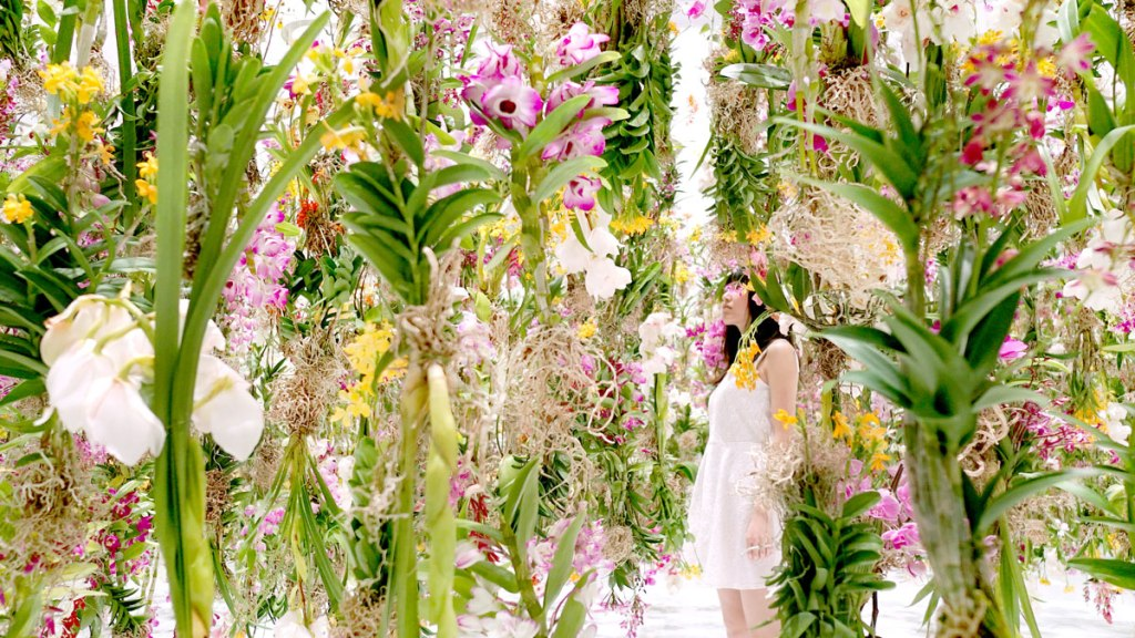 Floating-Flower-Garden_by_teamlab_japan (1)