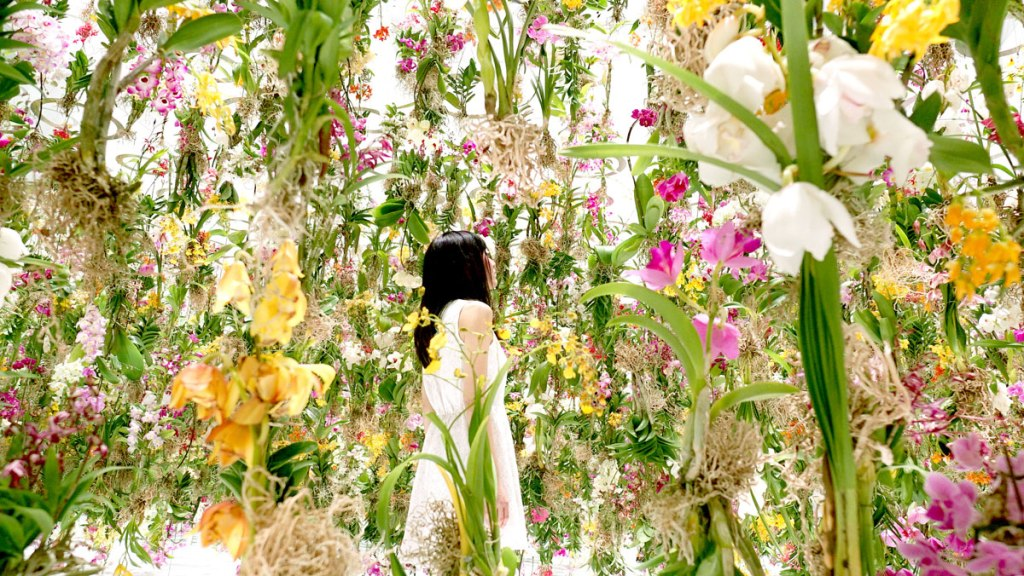 Floating-Flower-Garden_by_teamlab_japan (2)