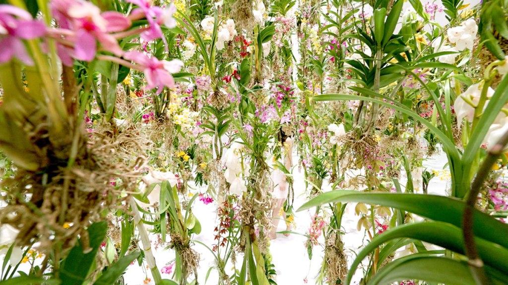 Floating-Flower-Garden_by_teamlab_japan (3)