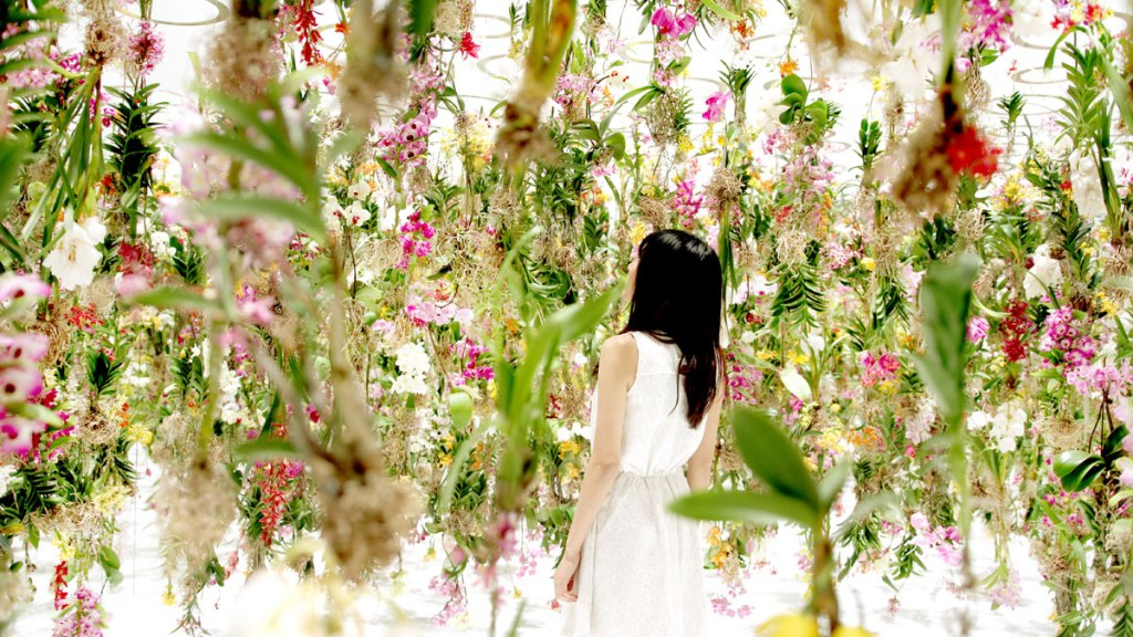 Floating-Flower-Garden_by_teamlab_japan (7)