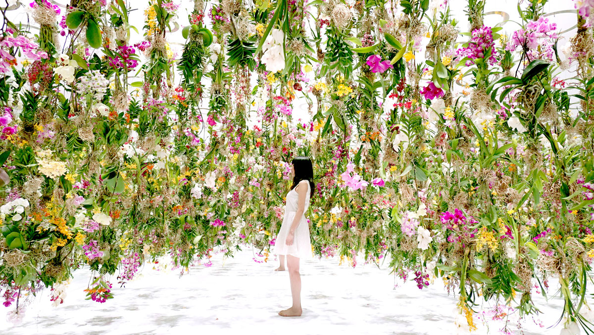 The Floating Garden In Japan Where Flowers Move Skyward As You