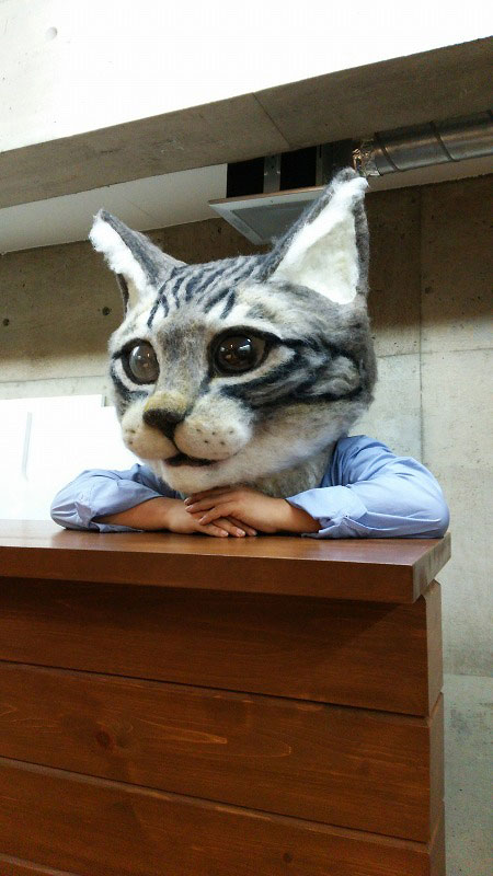 giant cat head you can wear japan (3)