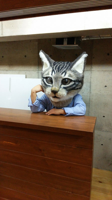 giant cat head you can wear japan (4)