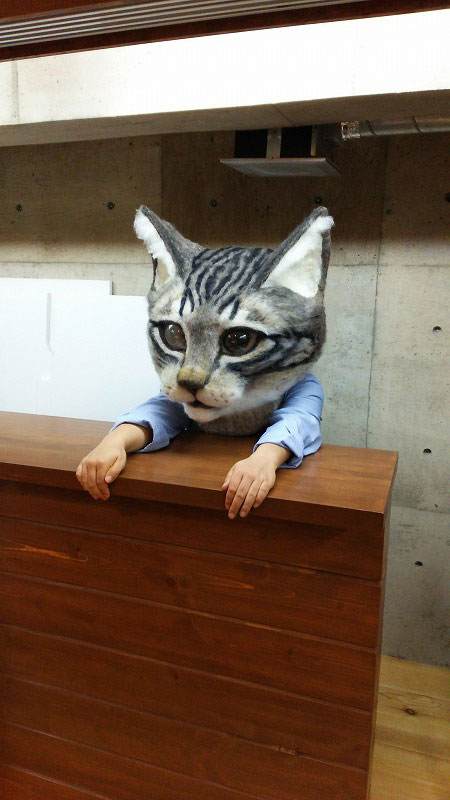 giant cat head you can wear japan (5)