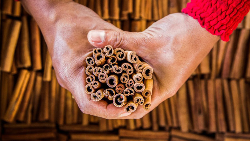 You'll Never Look at a Cinnamon Stick the Same Again