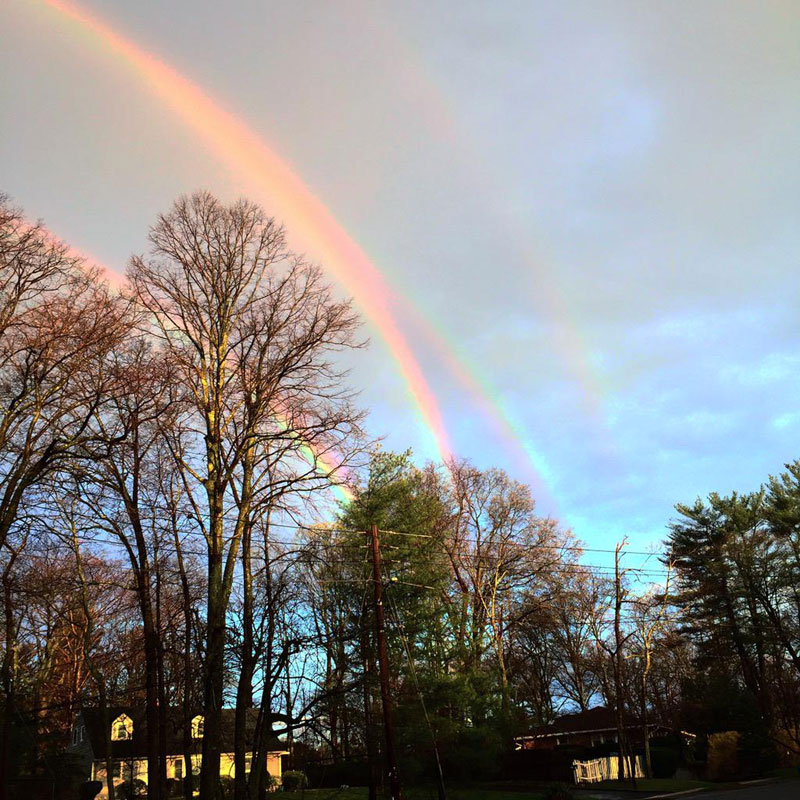 quadruple rainbow amanda curtis1 The Top 100 Pictures of the Day for 2015