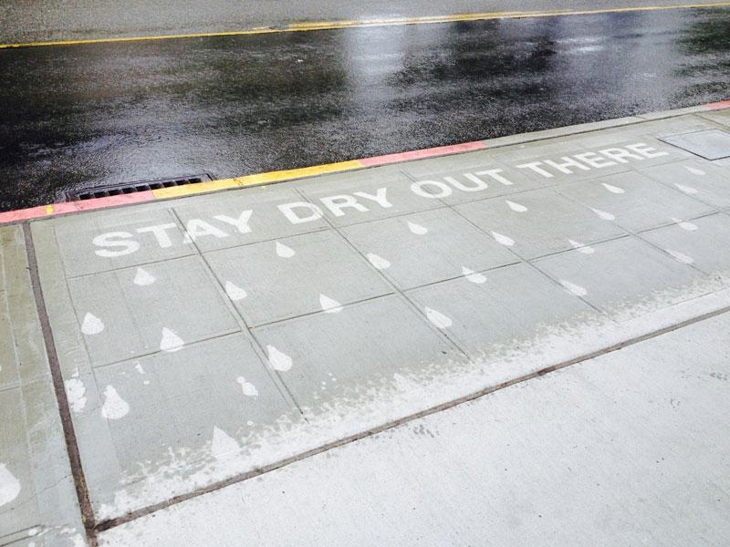 sidewalk art only appears when it rains peregrine church rainworks (6)