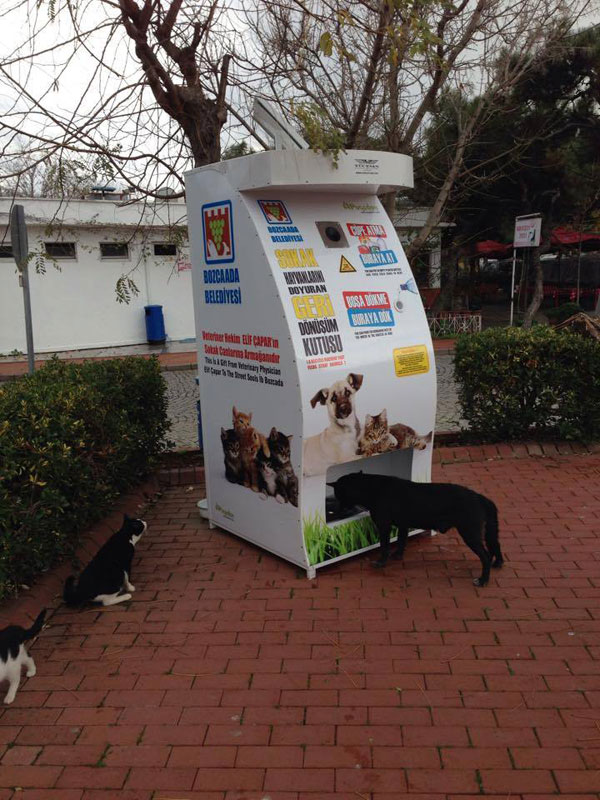 Vending Machine Feeds Stray Animals in Exchange for Recycled Bottles (2)