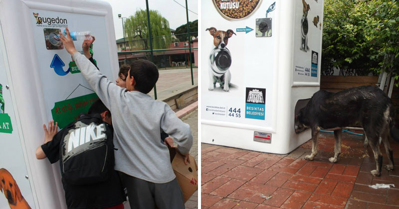 This Machine Feeds Stray Animals in Exchange for Recycled Bottles