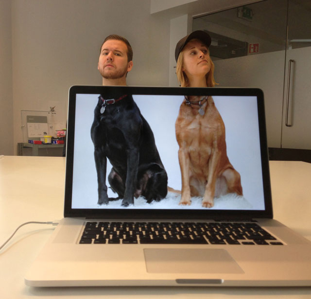 Coworkers-Add-their-Heads-to-Animals-on-Desktop Backgrounds (11)