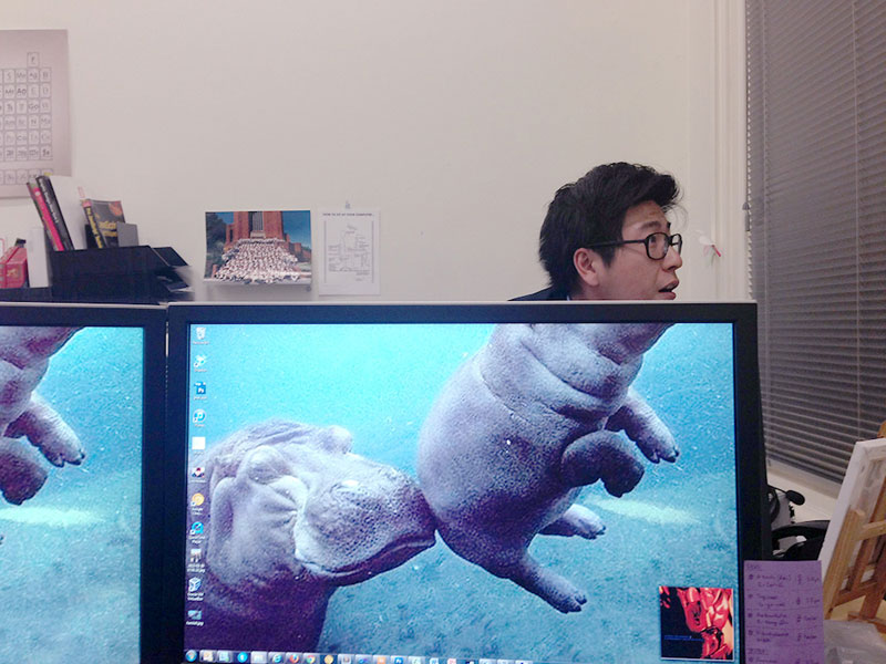 Coworkers-Add-their-Heads-to-Animals-on-Desktop Backgrounds (30)