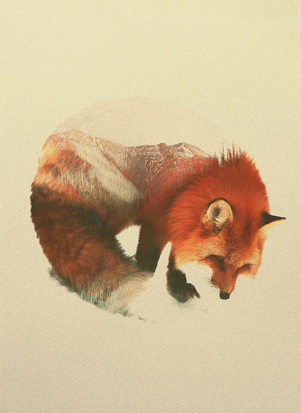double exposure animal portraits by andreas lie (1)
