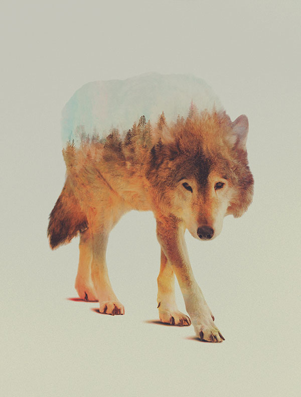 double exposure animal portraits by andreas lie (7)