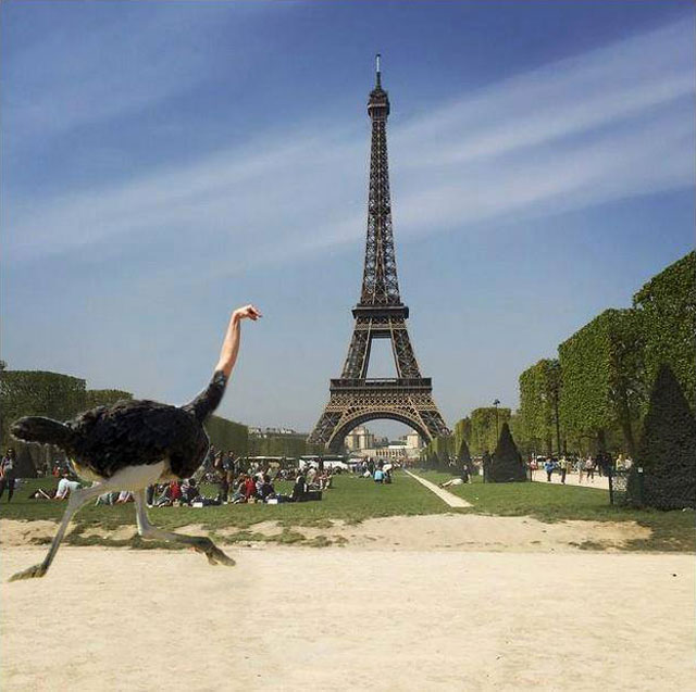 eiffel tower photoshop 4chan (38)