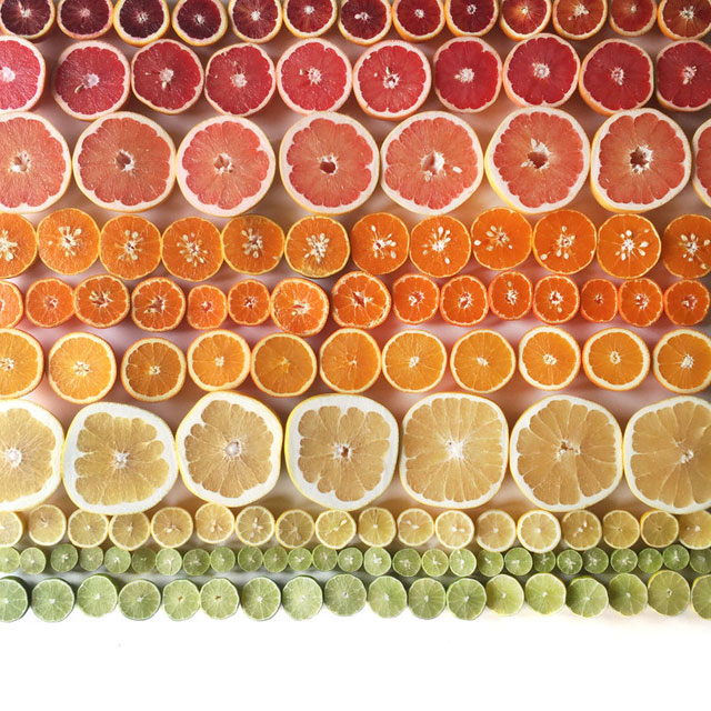 food gradients by brittany wright (7)