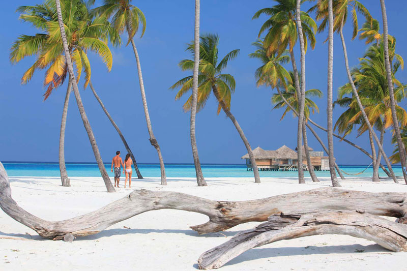 tripadvisor 2015 hotel of the year Gili Lankanfushi Maldives (27)