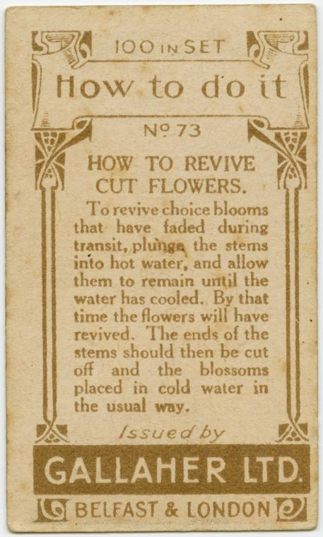 vintage life hacks from the 1900s (74)